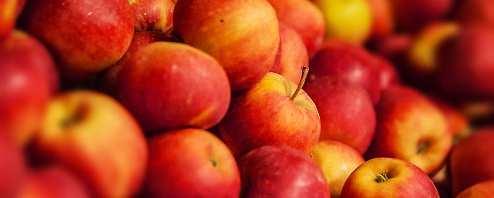 Tłocznia Owoców Pawłowski